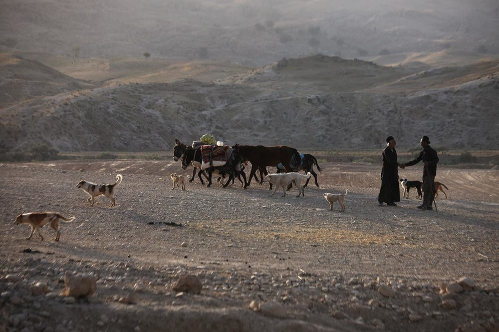Each year they migrate with their herds of sheep, cattle, and goats from summer pastures on the high plateaus of the Chaharmahal valley, across the Zagros Mountains, to over-winter their herds on the lowland plains of Khoozistan | IRAN