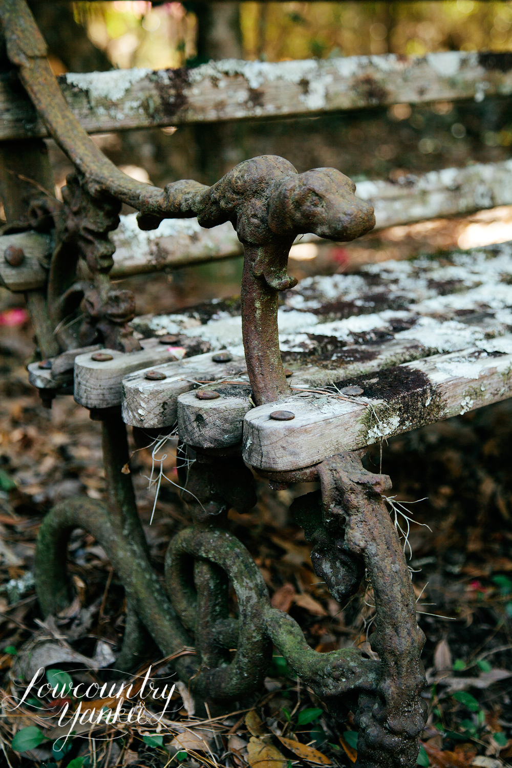 A bench outside of the cemetery