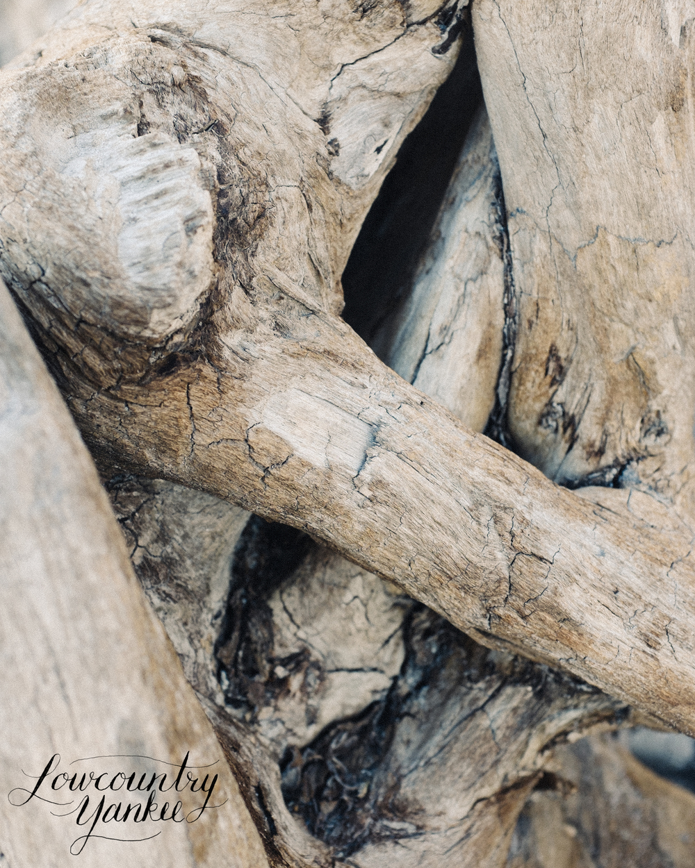 Naturally created driftwood sculptures