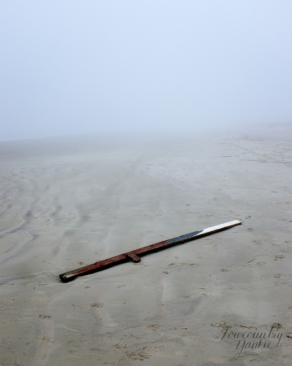 Driftwood washed ashore on a foggy morning at Kiawah.