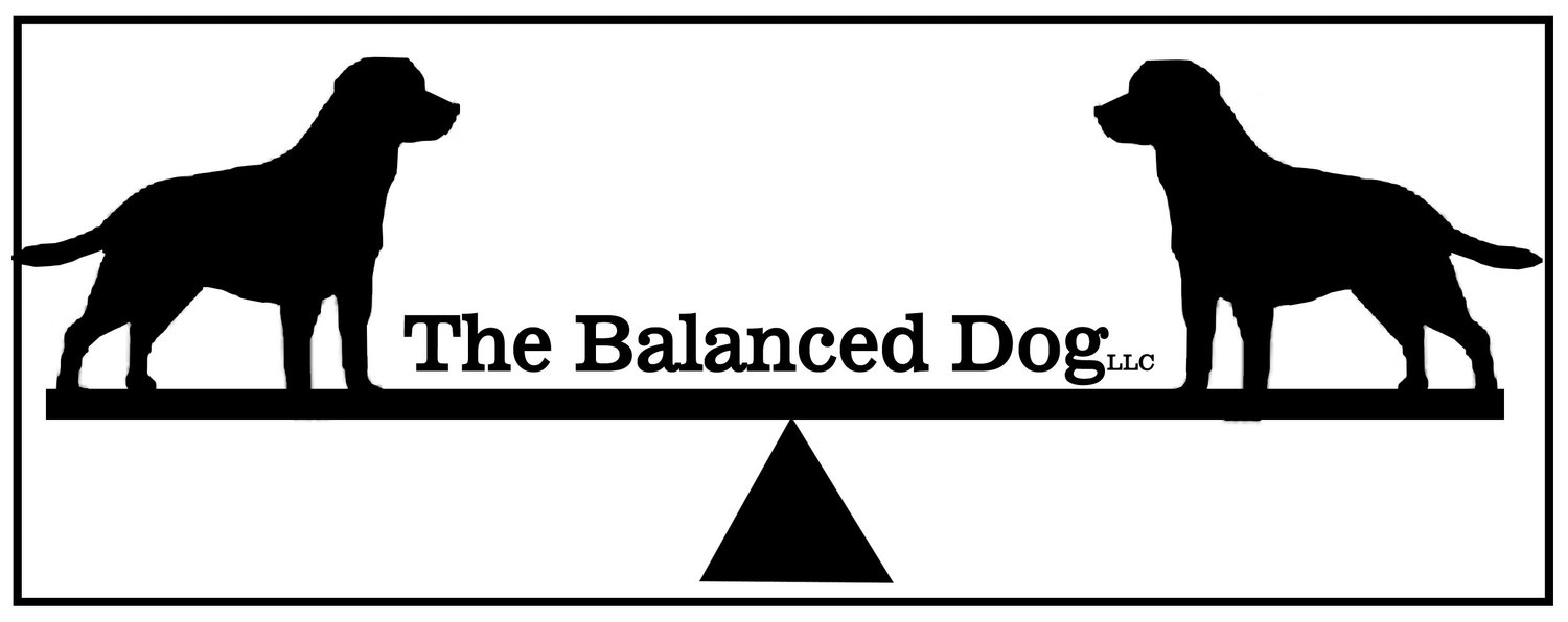 The Balanced Dog LLC