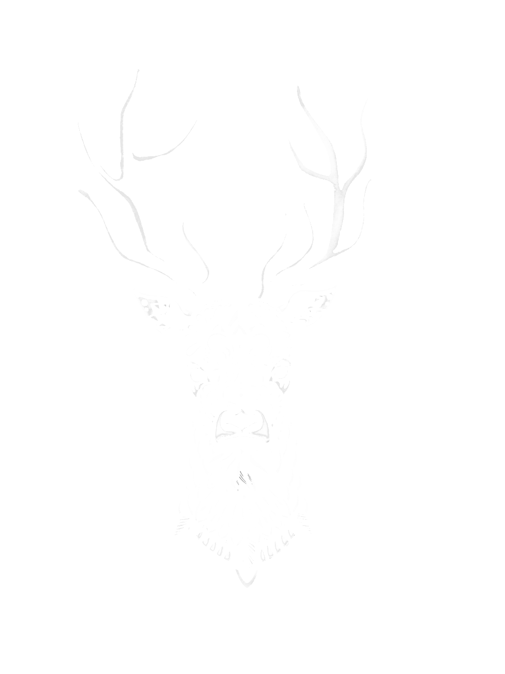 Deer drawing Inverted white.png