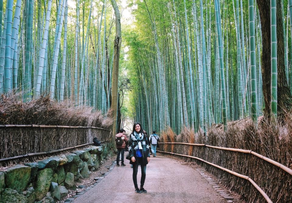 arashiyama_bamboo_forest.jpg