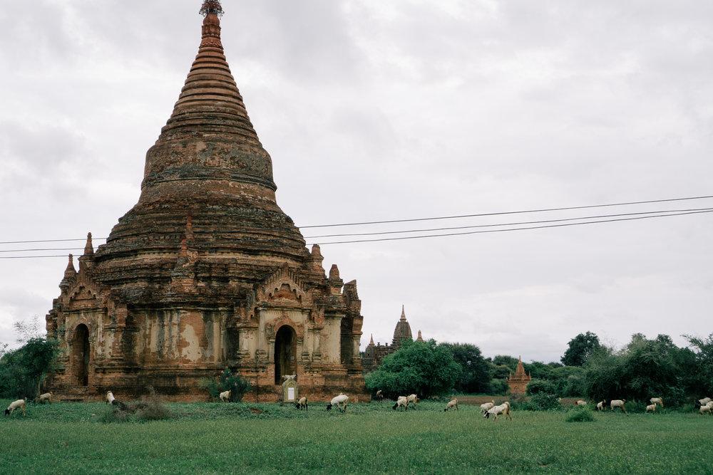 Myanmar_Bagan.jpg