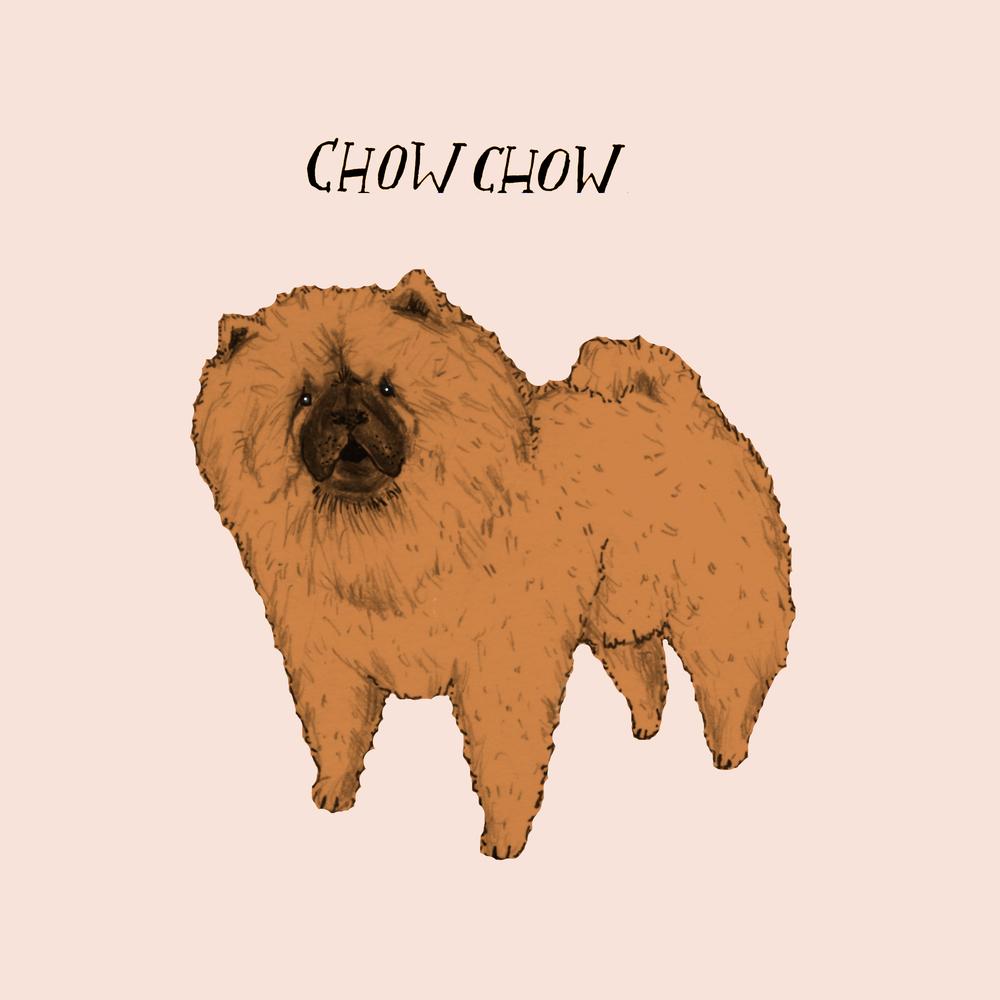 Dogadaychowchow.jpg