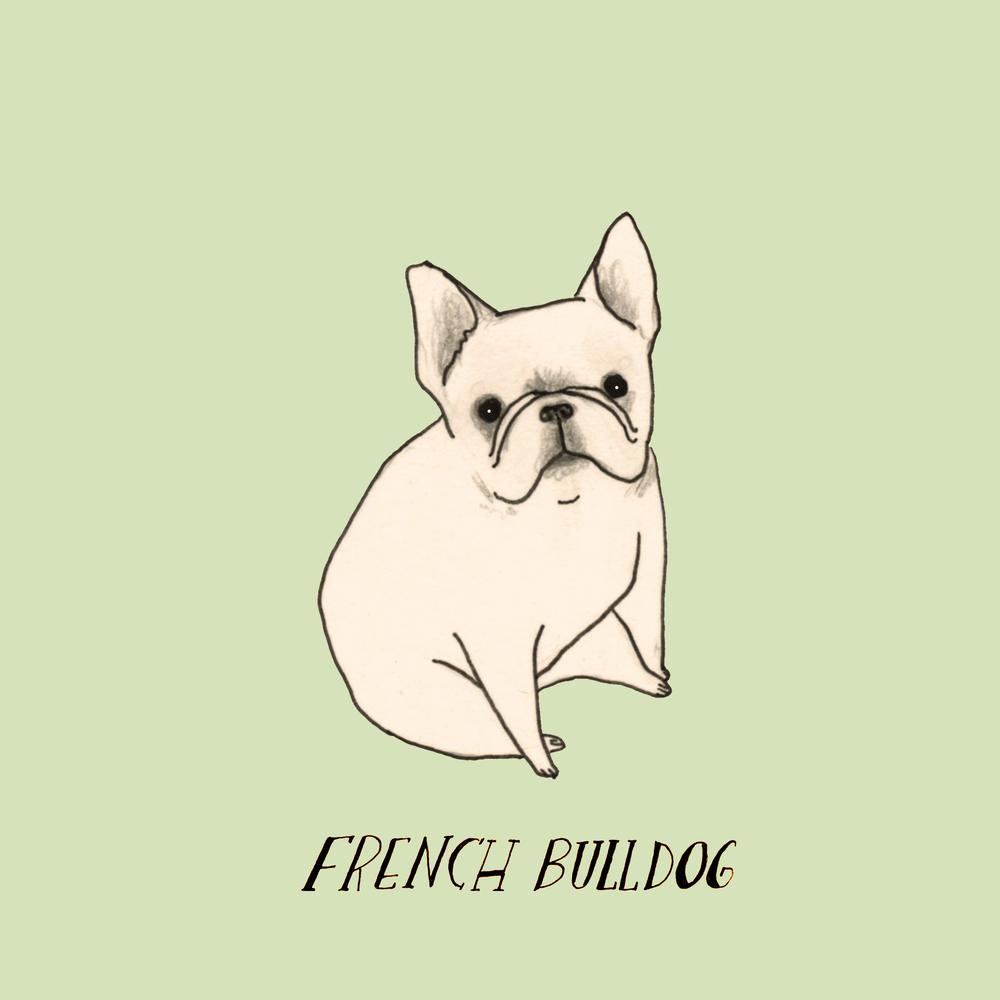 DogadayFrenchbulldog.jpg
