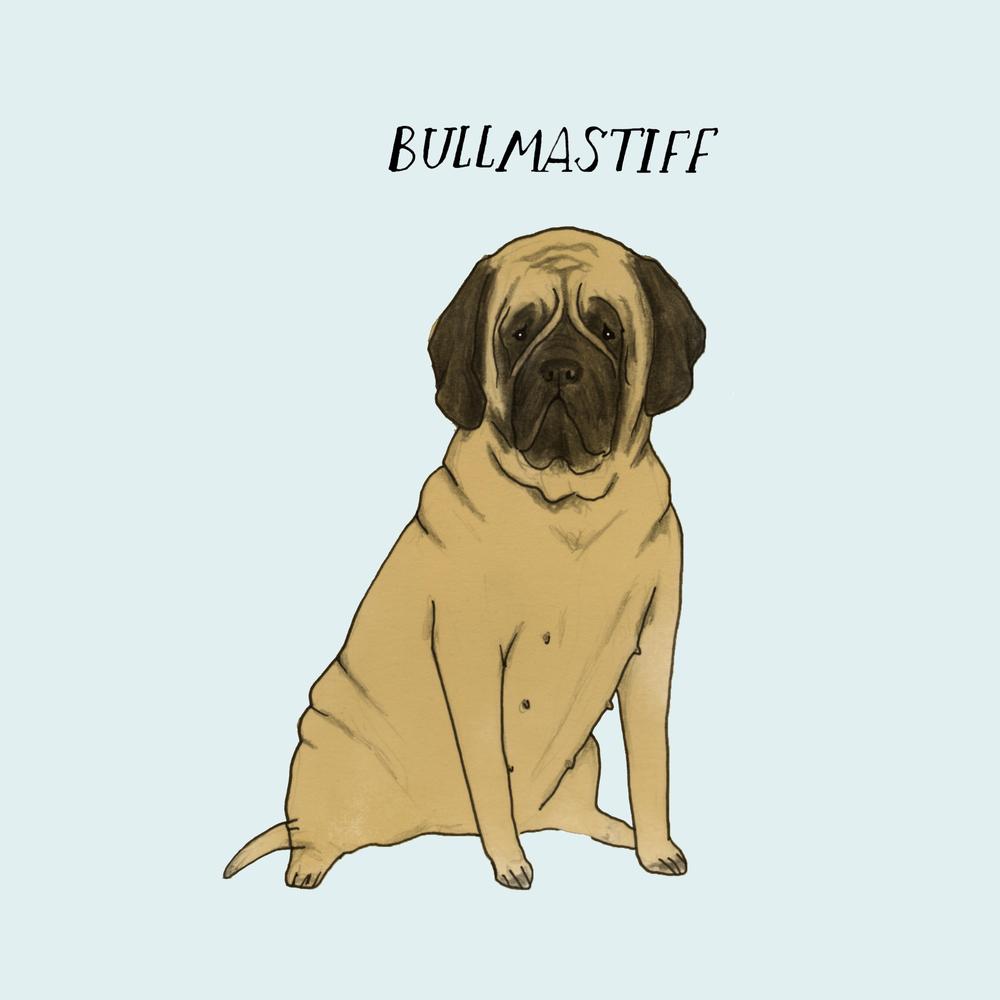 Dogadaybullmastiff.jpg
