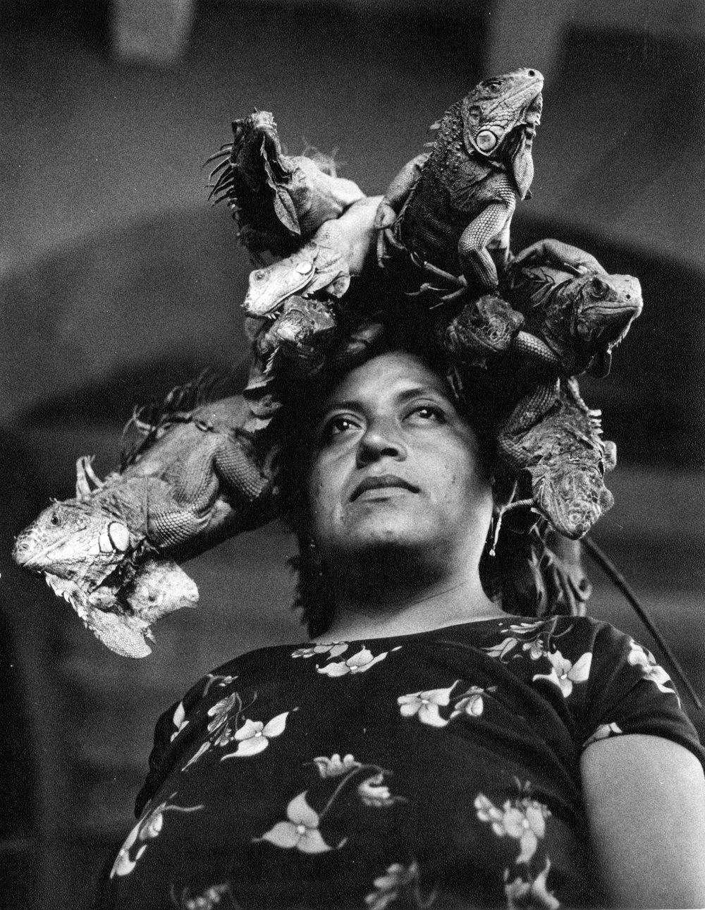 2_30 Nuestra señora de las iguanas.jpg