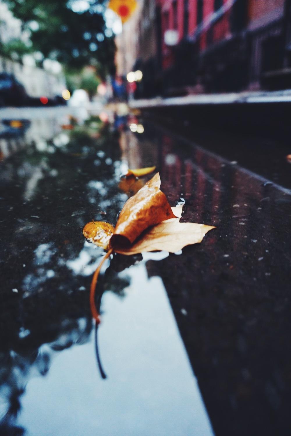 2014-10-23 21.52.31-1.jpg