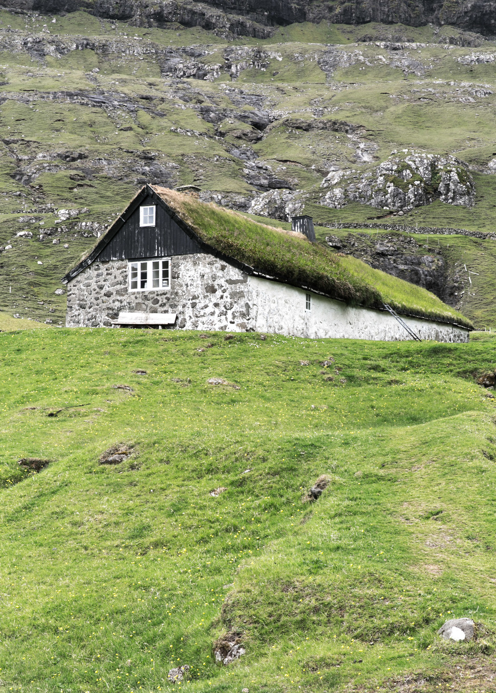 A typical Faroe house has gras as a roof