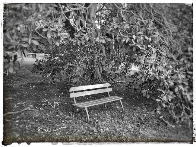 mirage poem photo.jpg