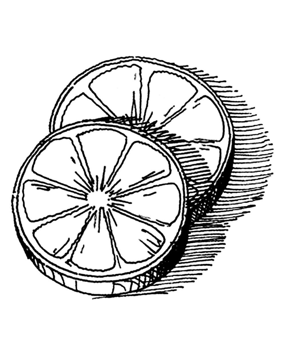 Lemon Line Drawing