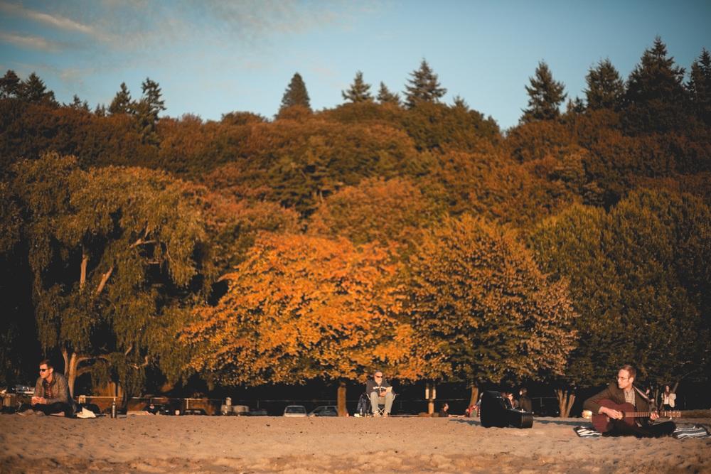 fall-golden-gardens.jpg
