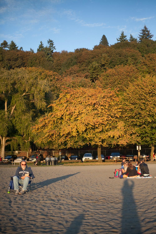 fall-golden-gardens_ballard-annette-rotz.jpg