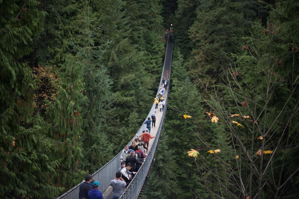 capilano-suspension-bridge.jpg