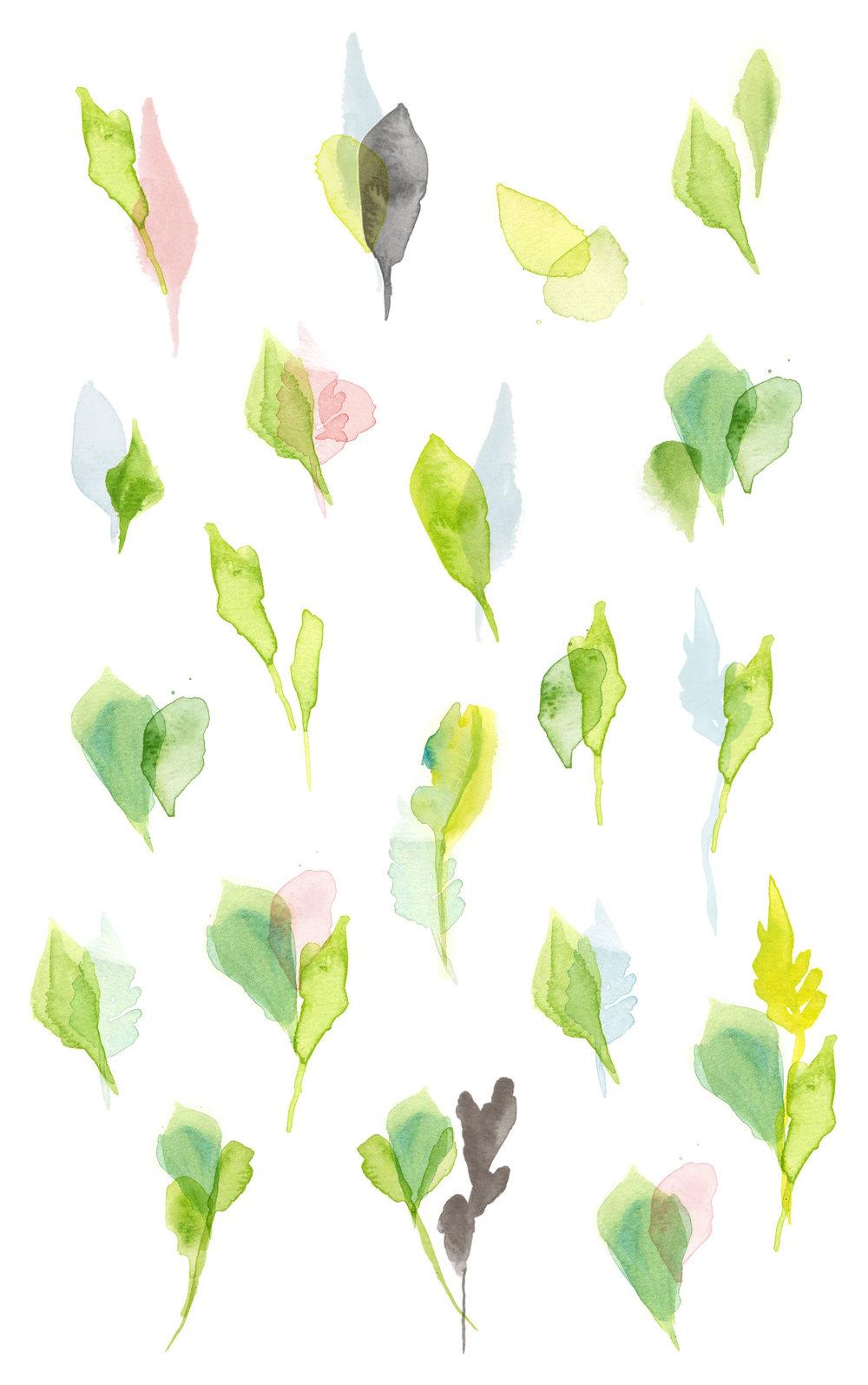 2016_Spring_illustrations_2.jpg