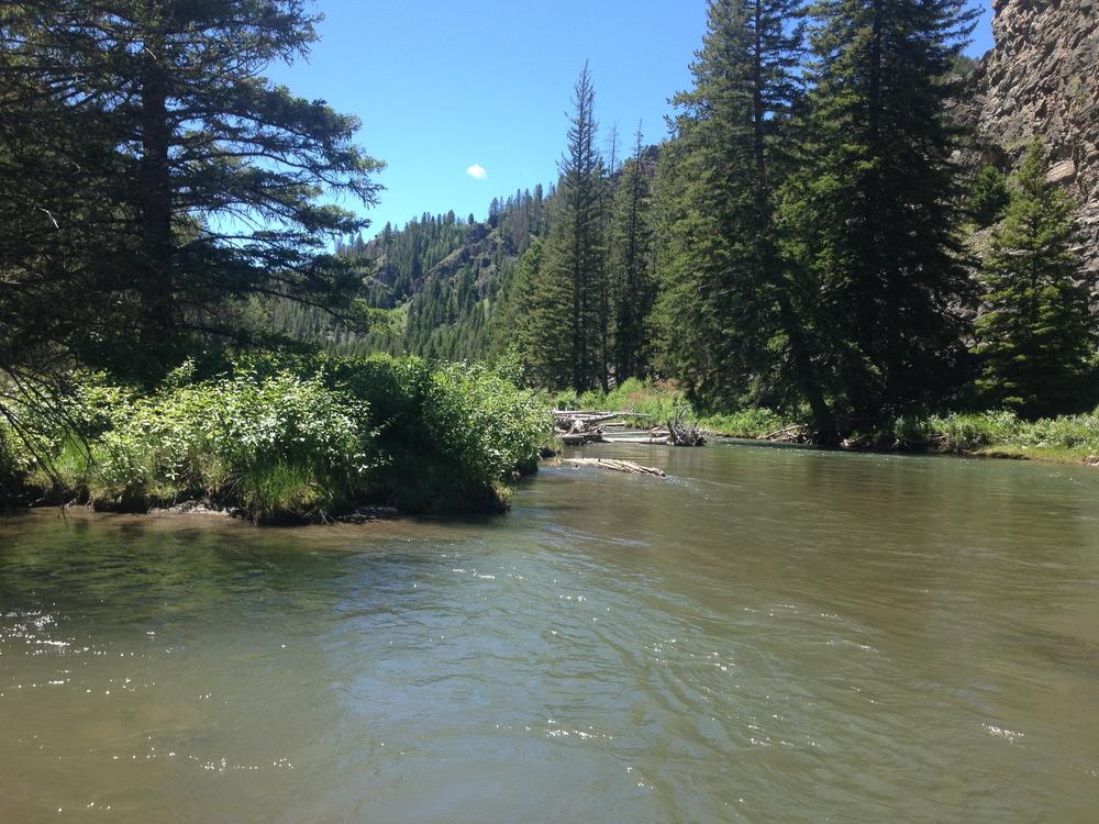 Gallatin River in Big Sky, Montana