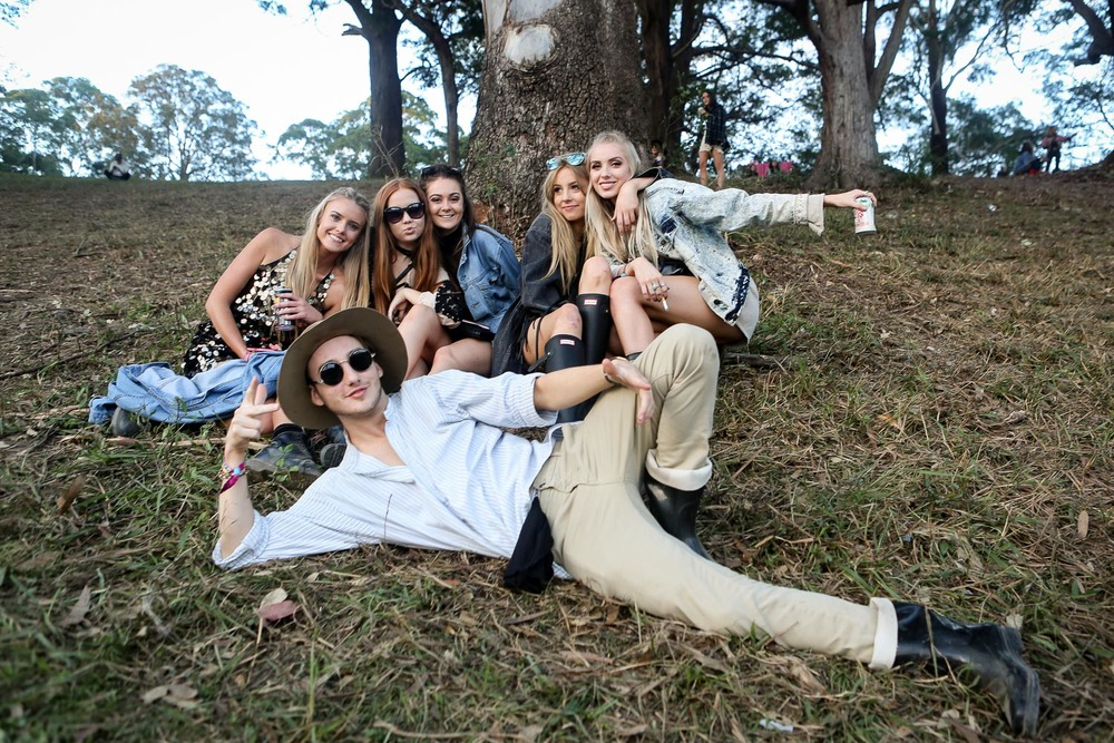 splendour in the grass, 2016.