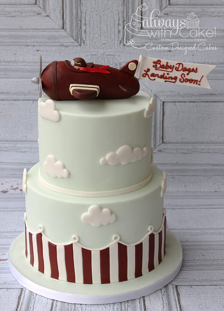 Vintage Airplane Baby Shower Cake