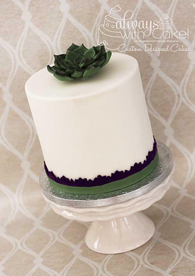 Succulent Anniversary Cake
