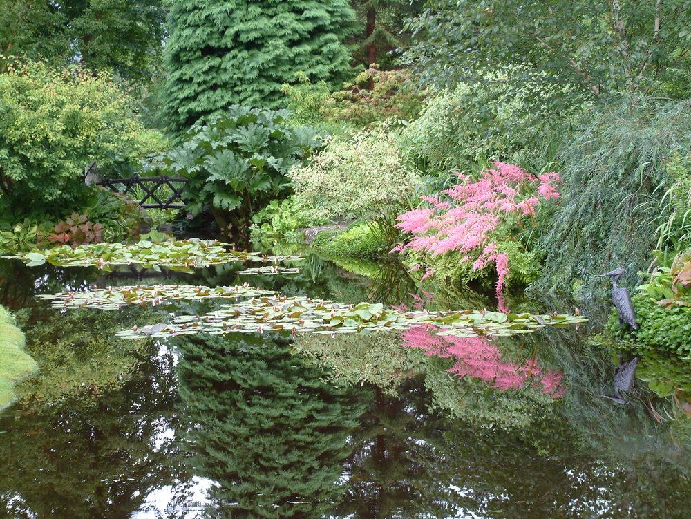 ponds (69).jpg