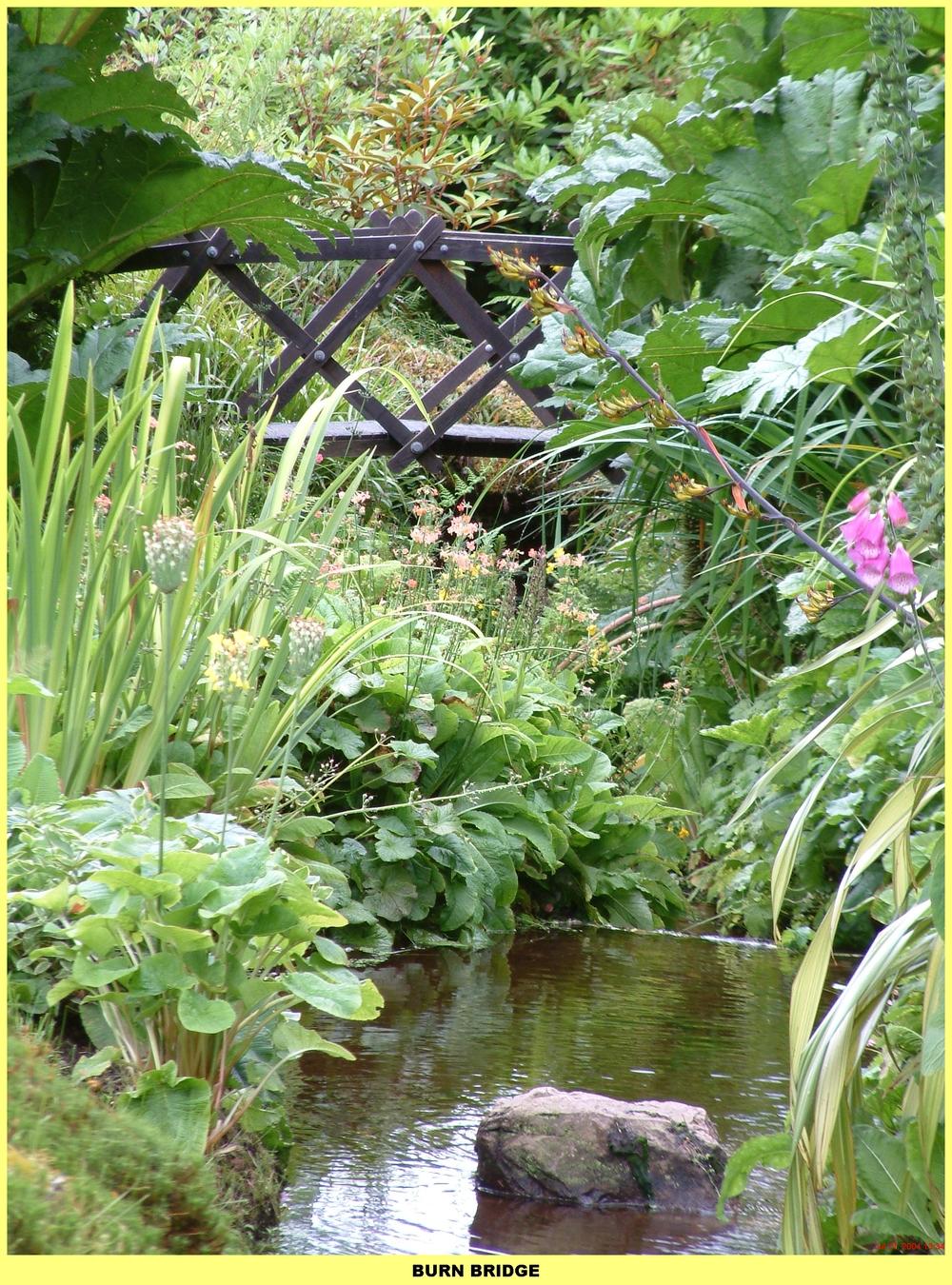 ponds (31).jpg