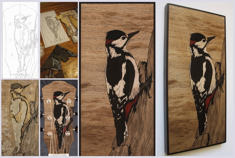 Greater Spotted Woodpecker 3