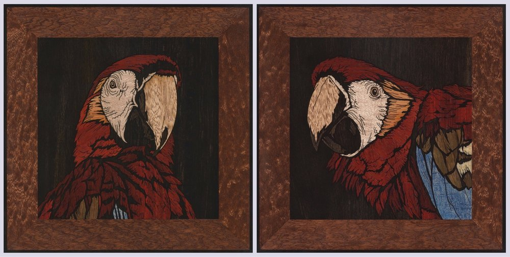 PARROTS square inlays