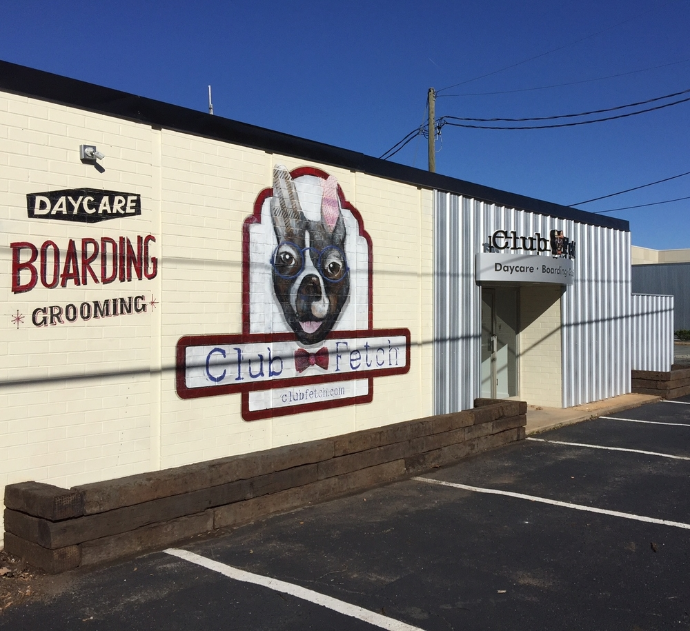 dog grooming in charlotte nc