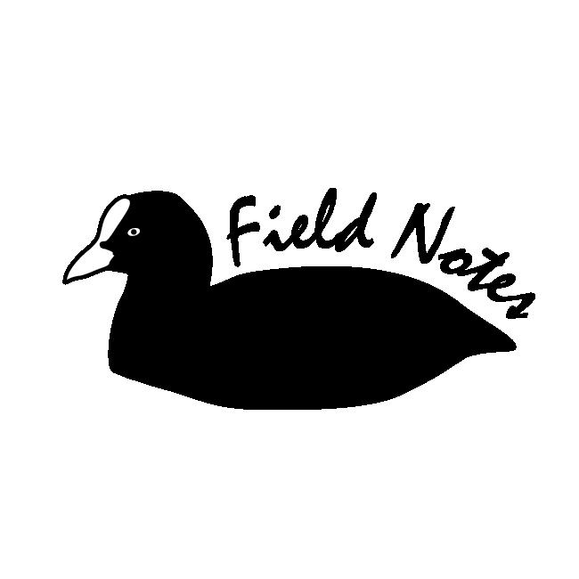 Coot_Logo_transparent-01.png