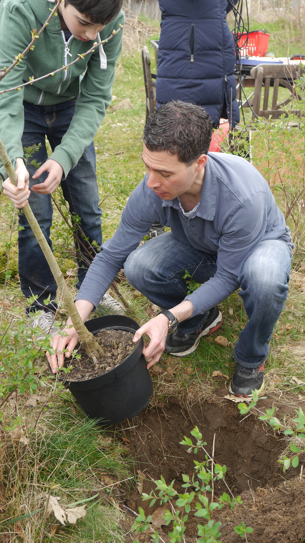 Leo and Robert Datnow plant cherry tree.JPG