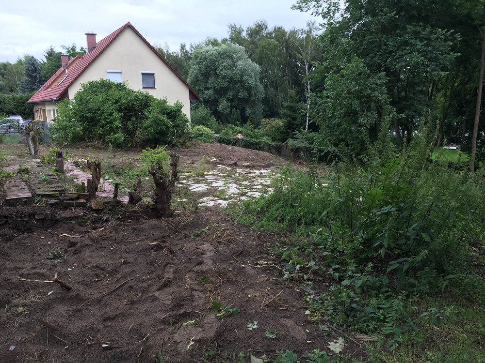 Next, We Have Been Working On Clearing The Land On The Top Level To Make  Way For A Volley Ball Court. This Was The Same Area That Hanns And Paul  Used To ...