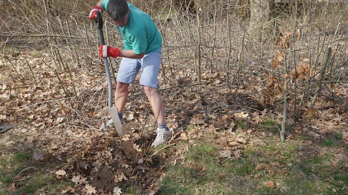 a+shovel.JPG