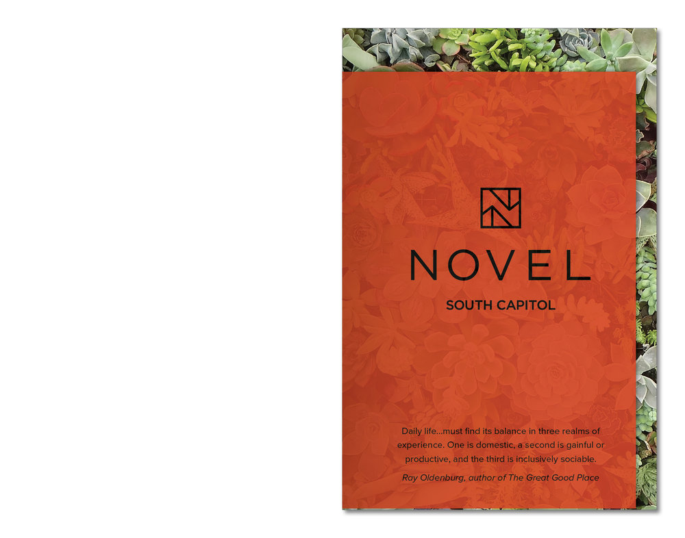 Novel Brochure Mock.jpg