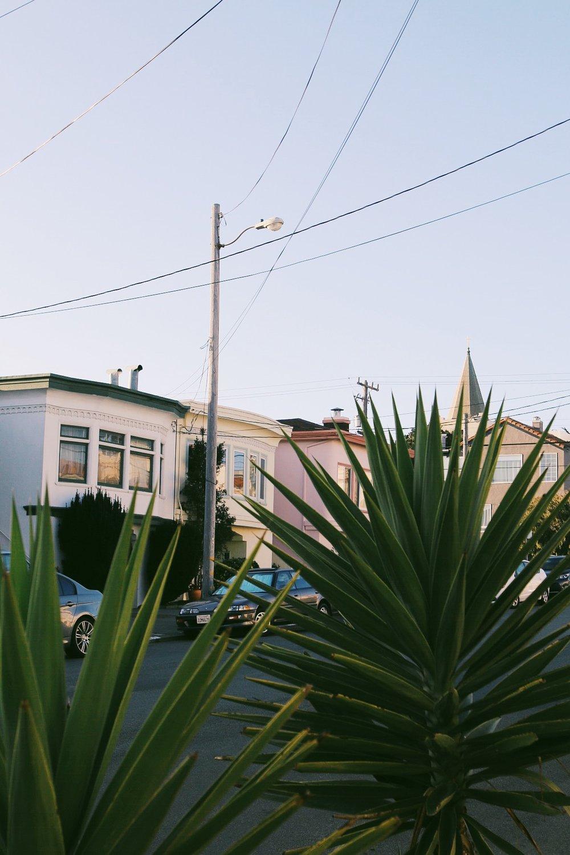 VIEW SAN FRANCISCO COLLECTION
