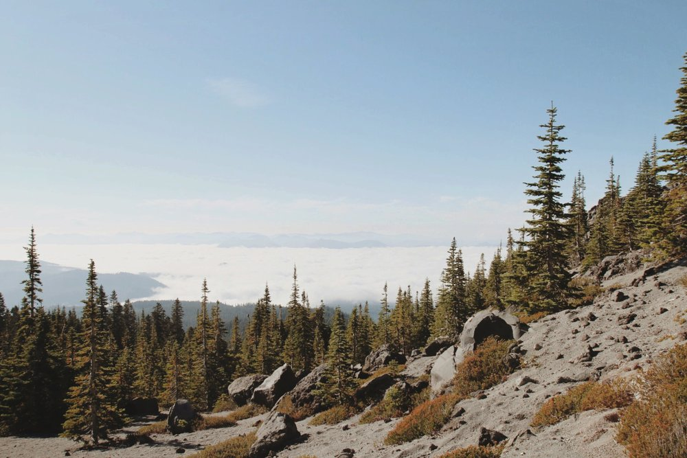 VIEW MOUNT ST. HELENS SUMMIT COLLECTION