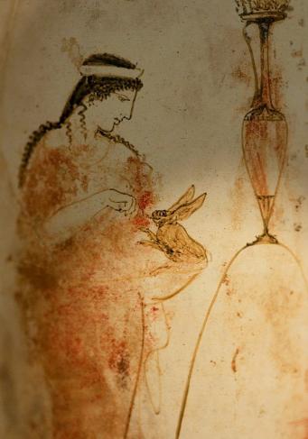 Yeshe Rabbit