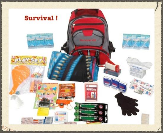 備えあれば憂いなし?   #survival#kit#parenting