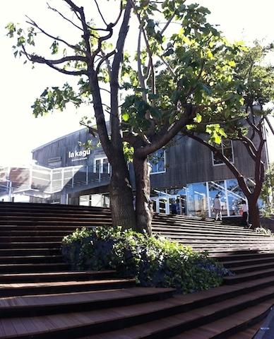 開放感のある入り口 #lakagu#kagurazaka#sazaby
