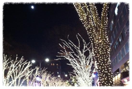 きらきら〜♡ #omotesando#illumination#christmas
