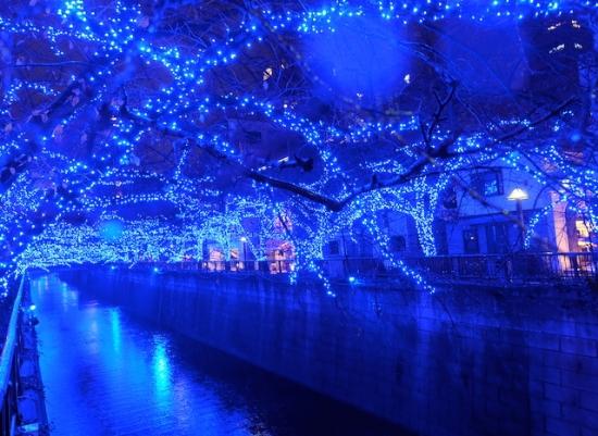 12月25日まで。  #bluegrotto#aonodoukutsu#nakameguro#megurogawa