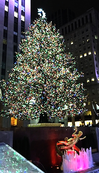Happy New Year from NYC ❤️ 2016年がみなさまにとって笑顔溢れる年になりますように✨