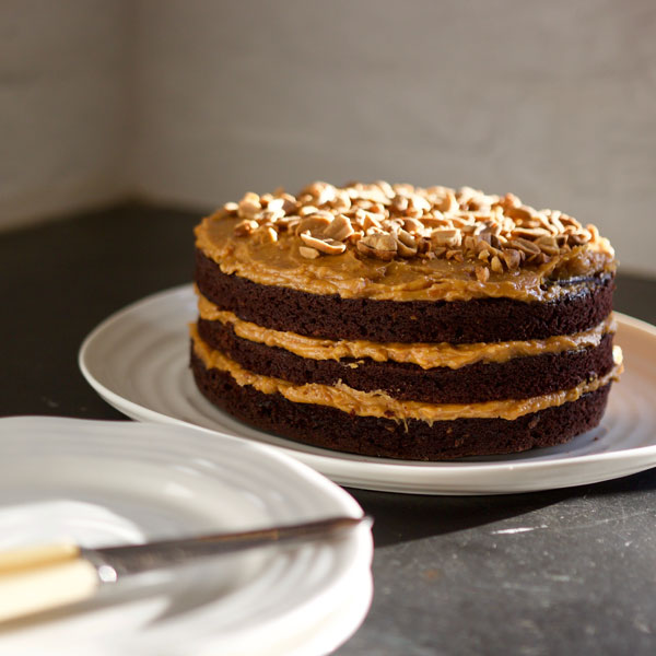 Utta Nutta PB and Dark Chocolate Cake