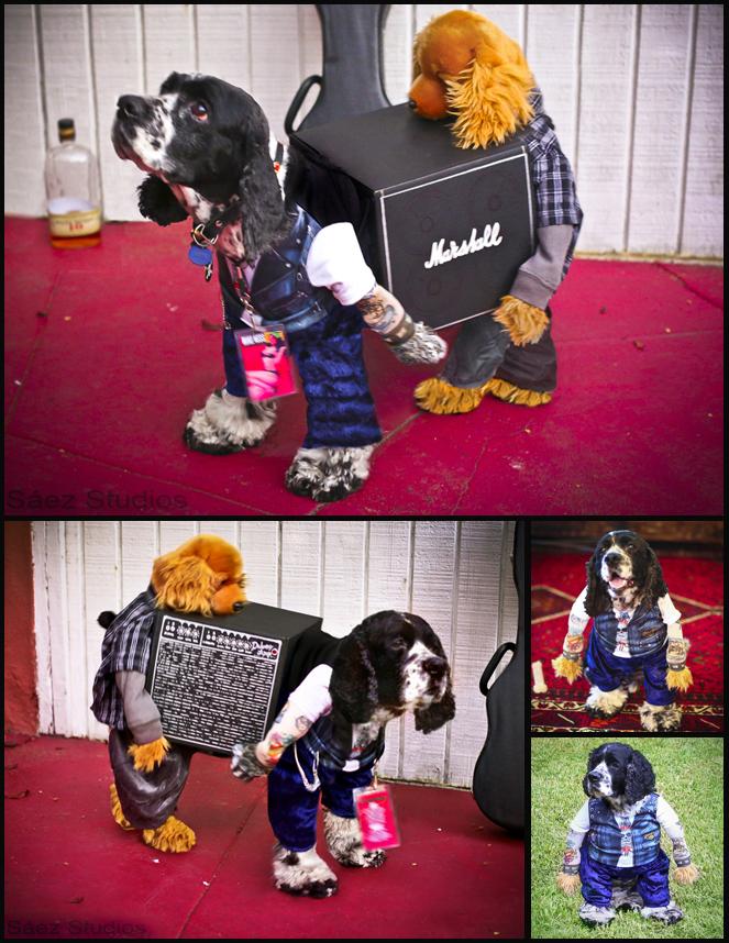 Satchmo on Halloween