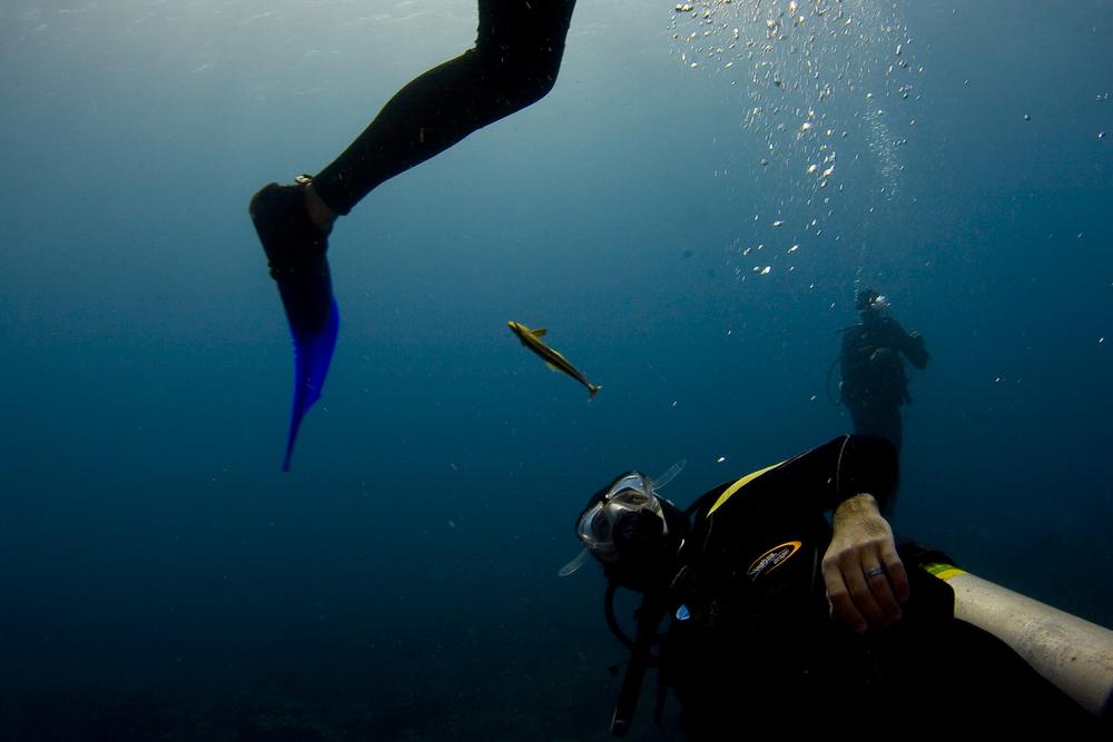 underwater-11.jpg