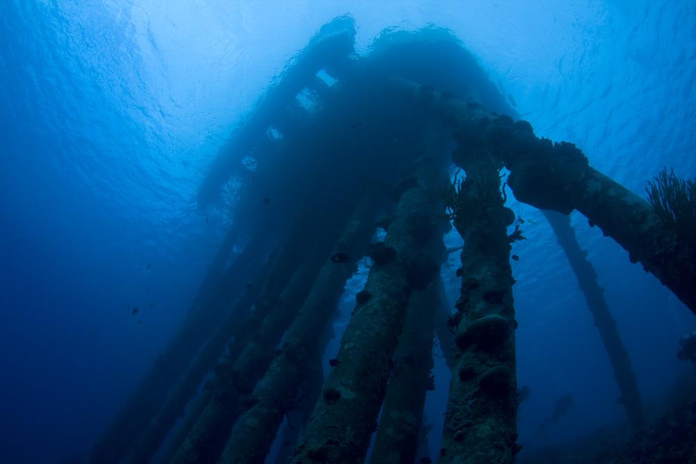 underwater-23.jpg