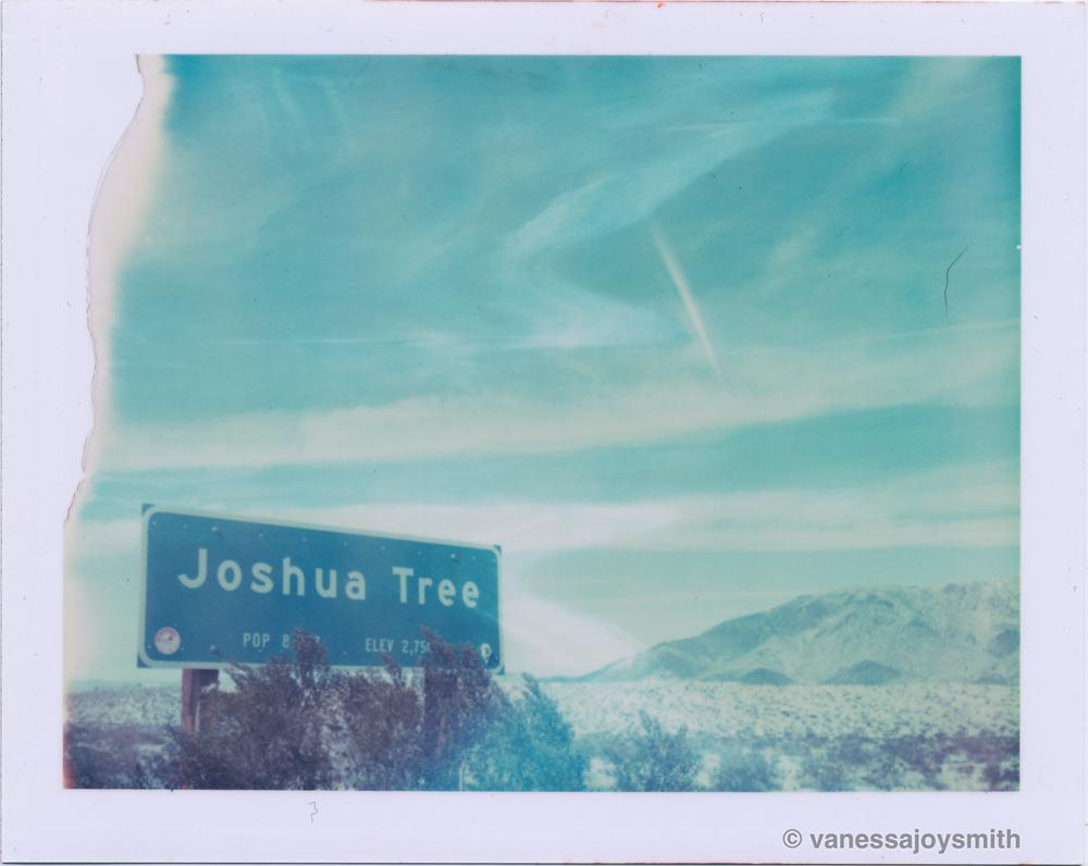 JoshuaTreeSign.jpg
