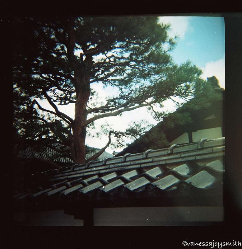 japanwtmk.jpg