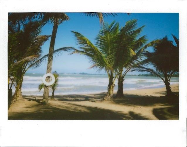 Instant FIlm 43.jpg