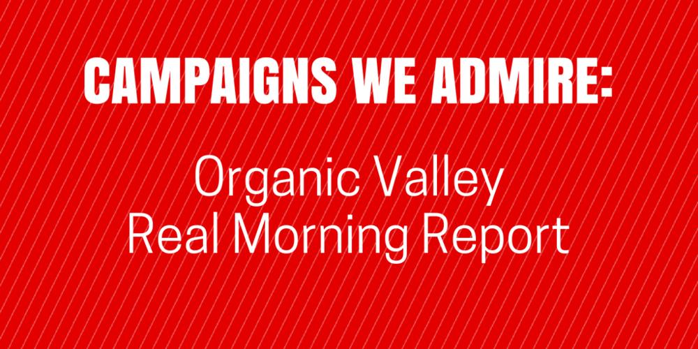 BrandTuitive_Campaign